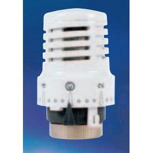Watts Industries Thermische kop 148 (3501148)